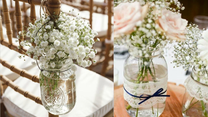 How to decorate with paniculata