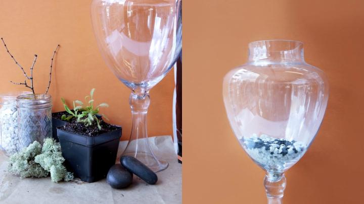 decorative-terrarium