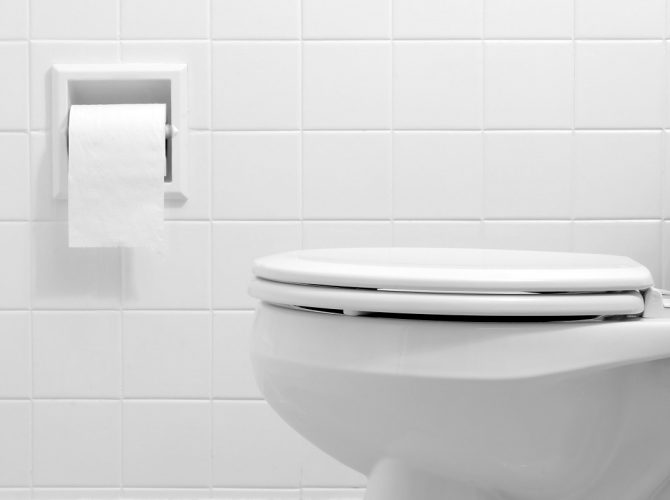 How to Clean the Toilet Quickly?