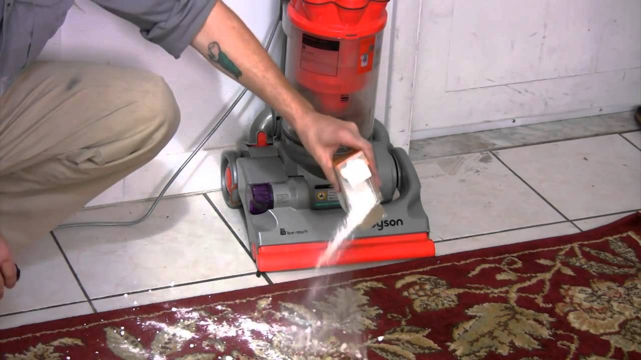 how to get rid of bed bugs with salt